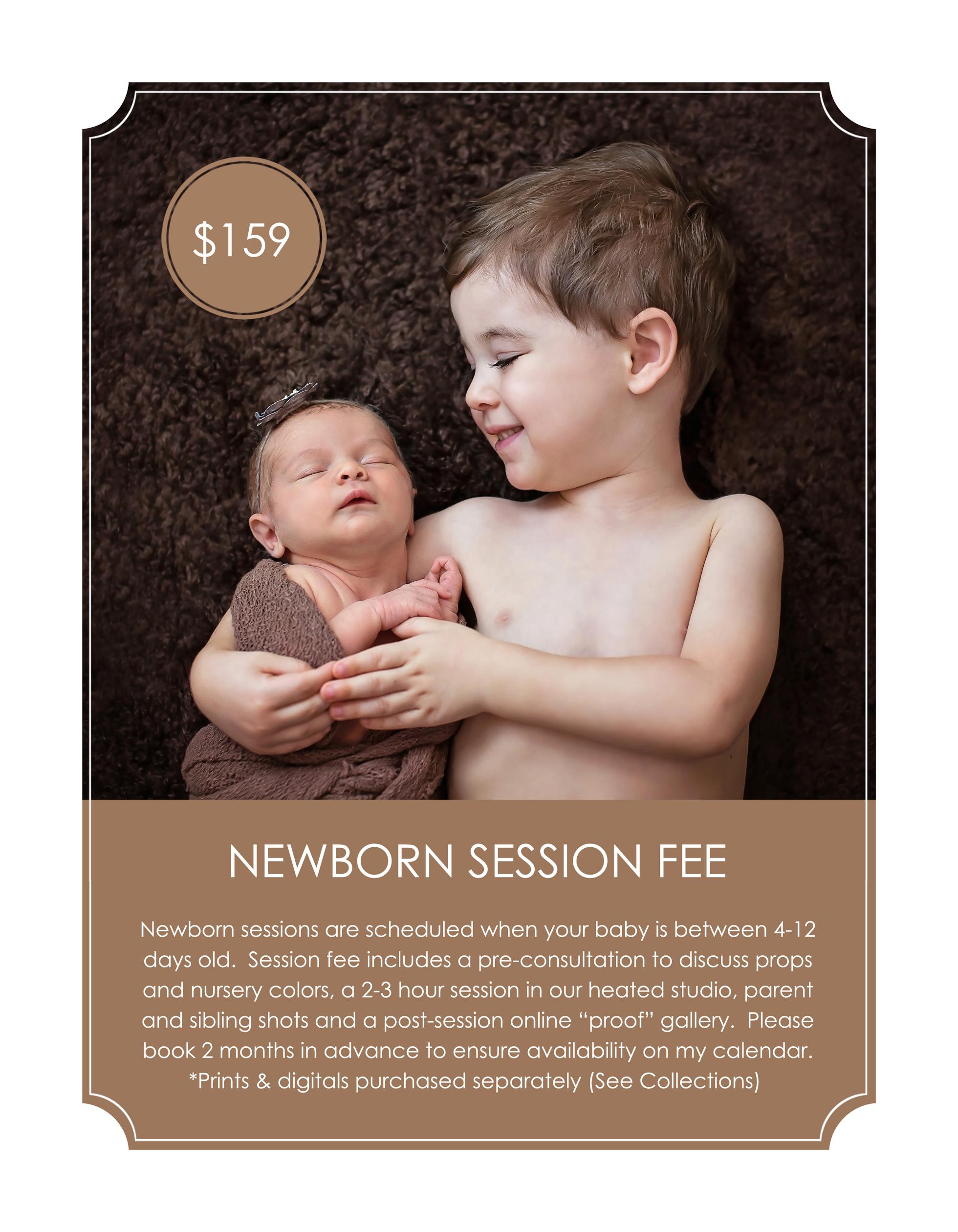 Newborn session pricing