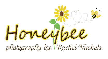 Richmond Virginia Family & Newborn photographer | Honeybee Photography logo